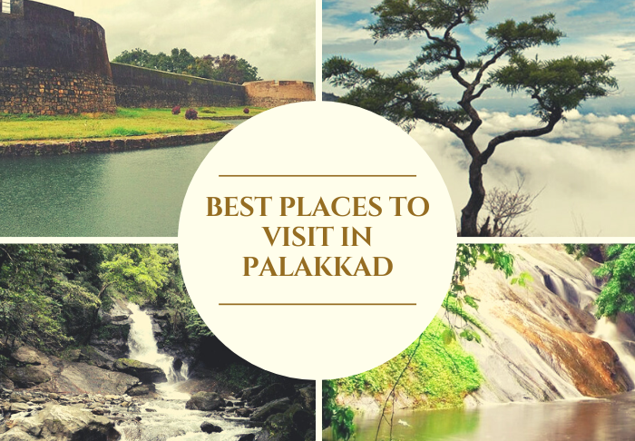 Best Places To Visit In Palakkad